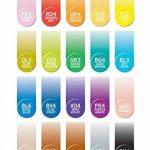 Chameleon Art Products - Marqueurs Chameleon Pens, 22 de luxe marqueurs à base d'alcool de la marque CHAMELEON image 2 produit