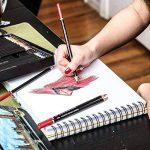 Colore Crayons de couleur - Ensemble de 48 crayons de couleur prime Pré-taillés pour dessiner et colorier des pages - Un super équipement d'art scolaire pour enfants et adultes - Livres à colorier- 48 couleurs de la marque Colore image 3 produit