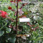 marqueur ecrit métal TOP 1 image 2 produit