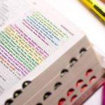 Surligneurs Gel, Feela 8 Bible Pastel Surligneurs Marqueurs Ensemble de couleurs assorties de la marque Feela image 4 produit